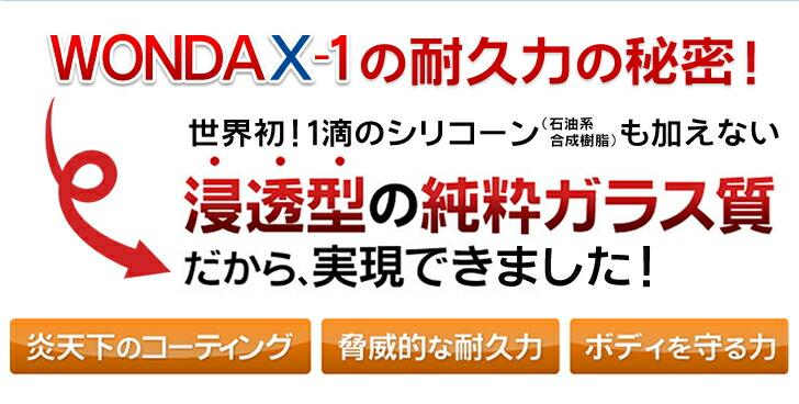 wondax-1_170113_12.jpg