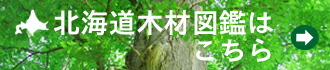 北海道木材図鑑