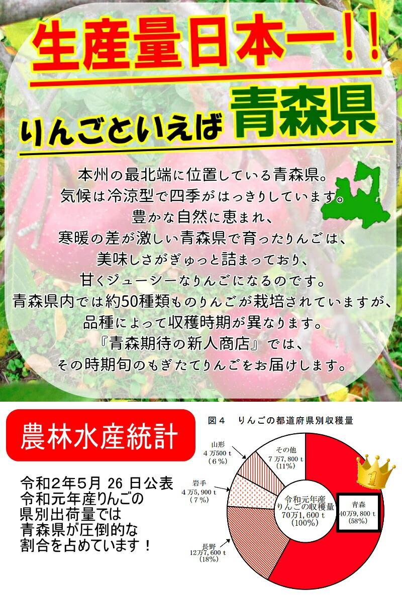 生産量日本一の青森県産りんご