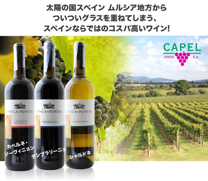太陽の国スペイン ムルシア地方からついついグラスを重ねてしまう、 スペインならではのコスパ高いワイン!