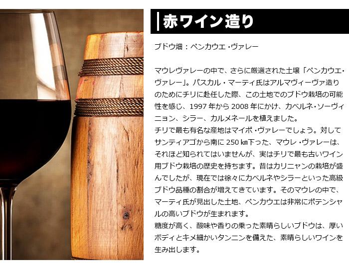 赤ワイン造り