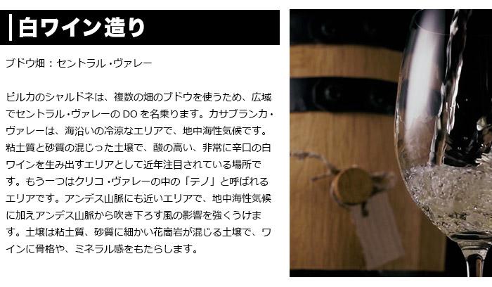 白ワイン造り