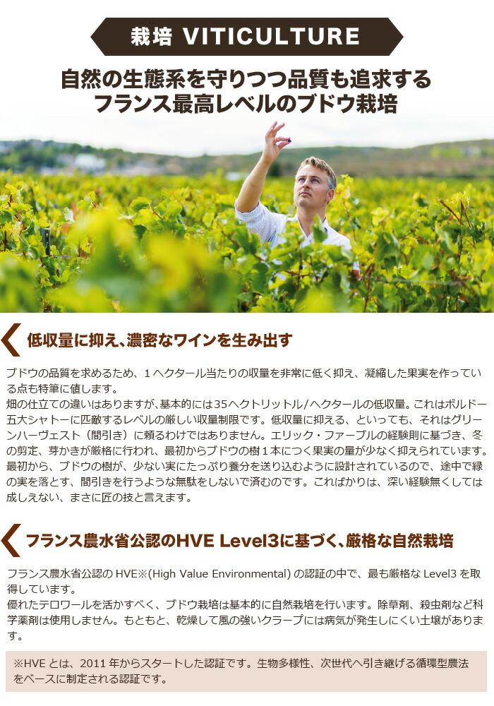 自然の生態系を守りつつ品質も追求するフランス最高レベルのブドウ栽培