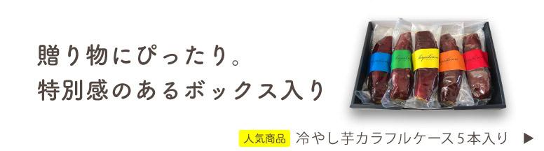 hiyashiimo 冷やし芋カラフルケース 5本入り