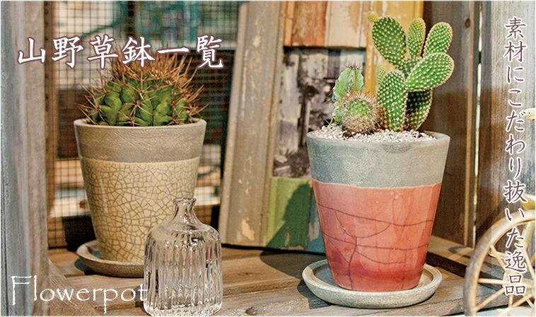 信楽焼の植木鉢
