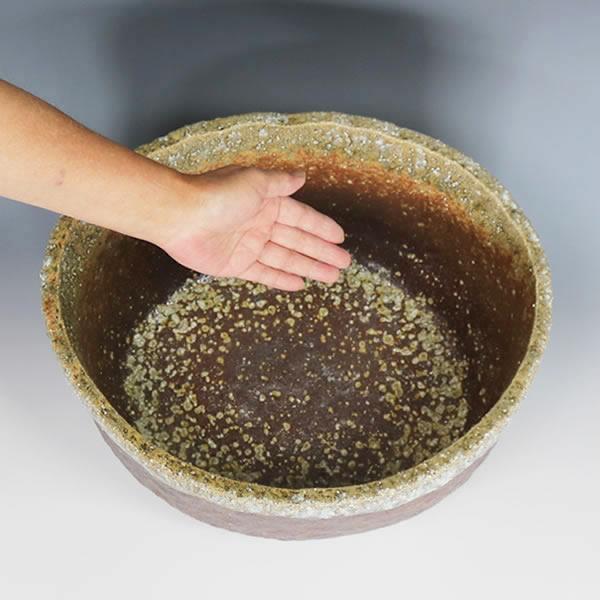 信楽焼すいれん鉢 陶器睡蓮鉢ハス鉢スイレン鉢