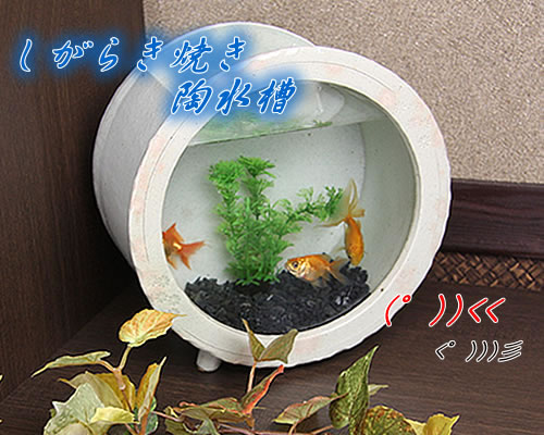 Mauichi Honten Shigaraki Yaki Aquarium Ceramic Tank Pottery And