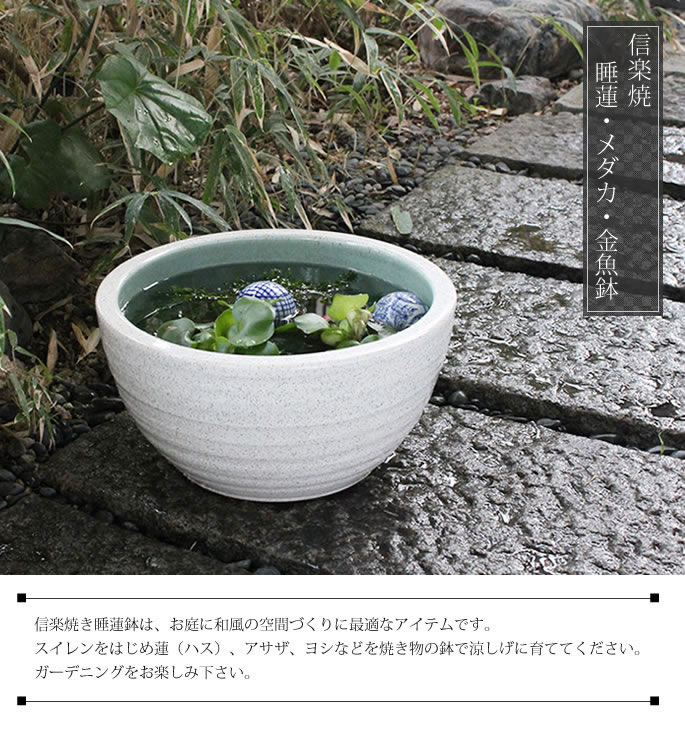 信楽焼き水鉢 すいれん鉢 金魚鉢 メダカ鉢 陶器睡蓮鉢 スイレン鉢