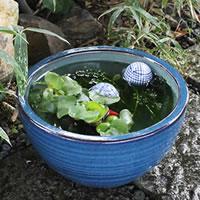 10号ナマコ水鉢