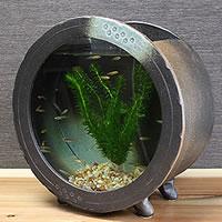 陶器水槽【大】丸型