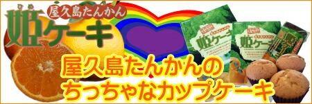 屋久島たんかん姫ケーキ