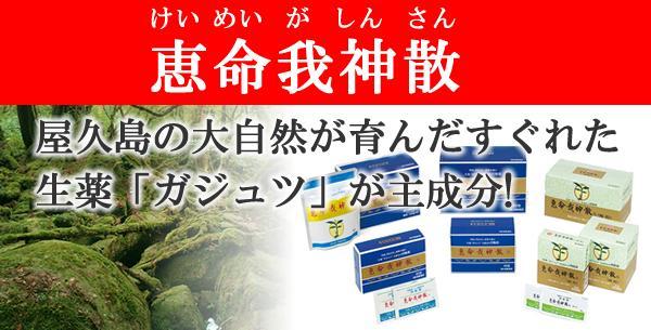 恵命我神散 けいめいがしんさん 屋久島の大自然が育んだすぐれた生薬「ガジュツ」が主成分!