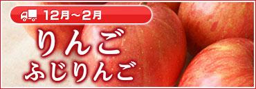 りんご ふじりんご