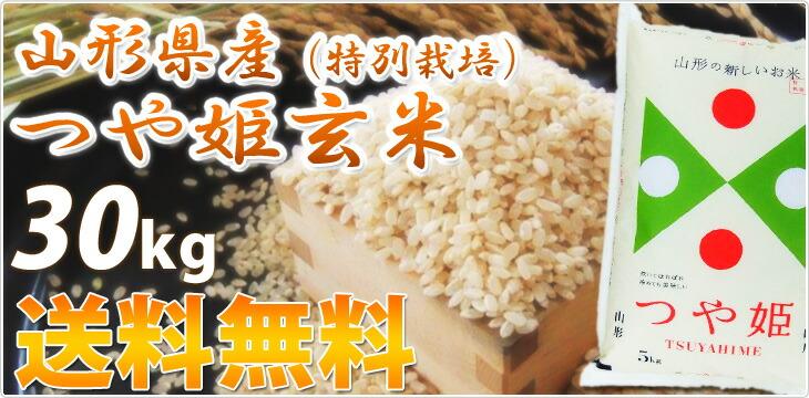 つや姫 玄米 30kg