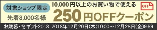 お歳暮ギフト250円クーポン