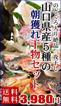 山口県産5種の朝獲れ干物セット