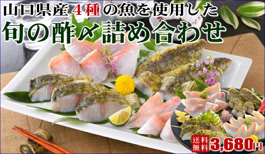 山口県産4種の魚を使用した旬の酢〆詰め合わせ