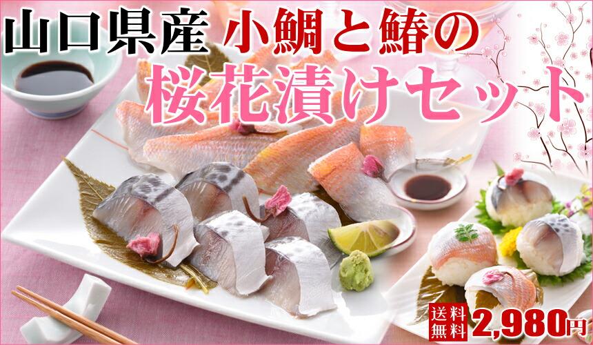 山口県産さわらと小鯛の桜花漬けセット