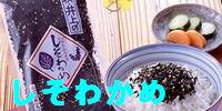 萩・井上商店