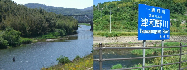 匹見川(左) 津和野川(右)
