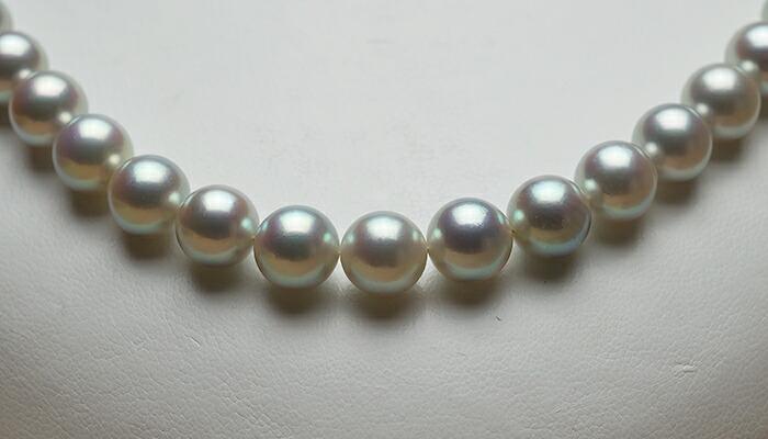 【真珠の本場 伊勢志摩よりお届け】8.0〜8.5mm あこや本真珠シルバーグレーネックレス【nc0211】