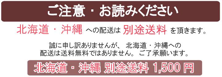 北海道・沖縄は別途送料※1500円