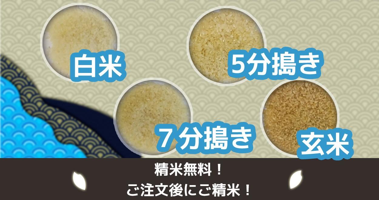 玄米商品はお好みの精米をお選びいただけます。