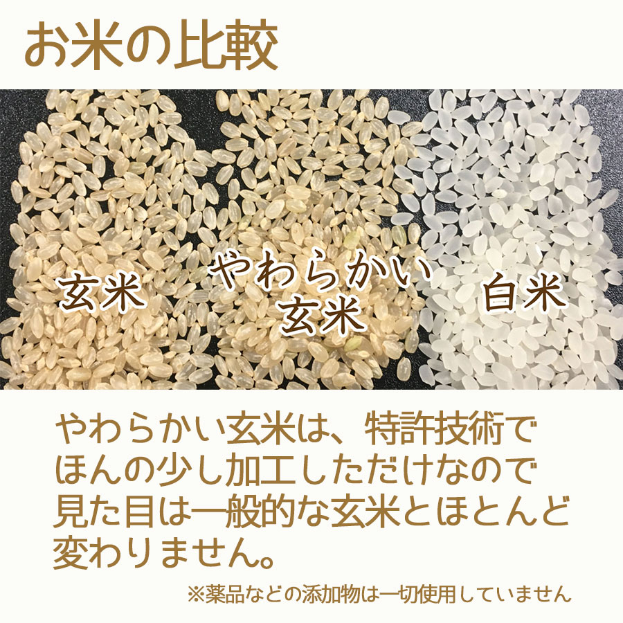 お米の比較