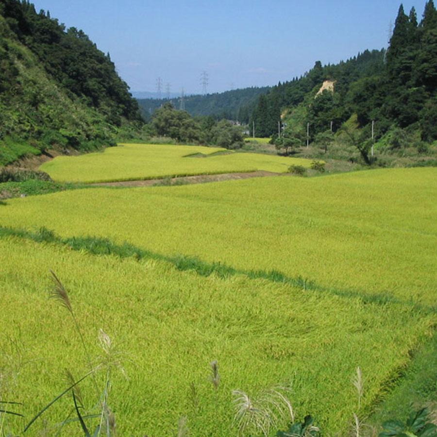 北海道風景2