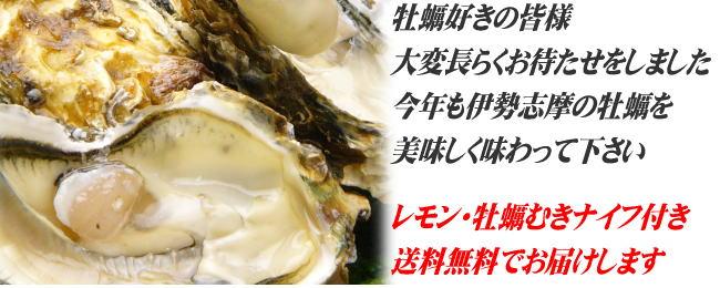 殻付き牡蠣の出荷が始まりました