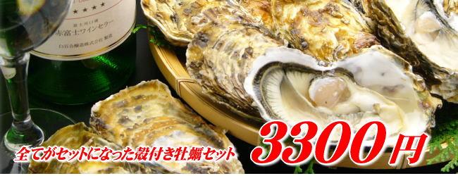 送料無料3300円