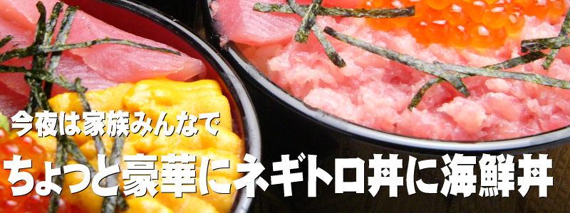 今夜ネギトロ丼に海鮮丼いかがですか