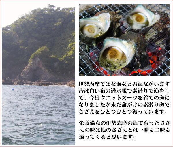 伊勢志摩のさざえ漁