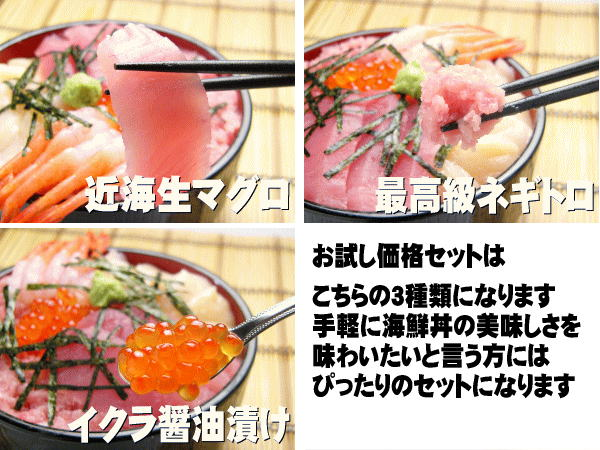 近海生マグロ・イクラ醤油漬け・最高級ネギトロ