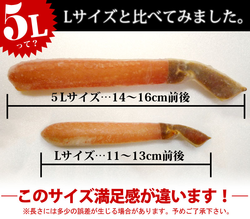 Lサイズと比較