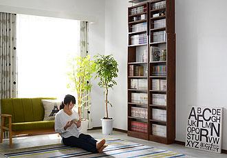 つっぱり書棚