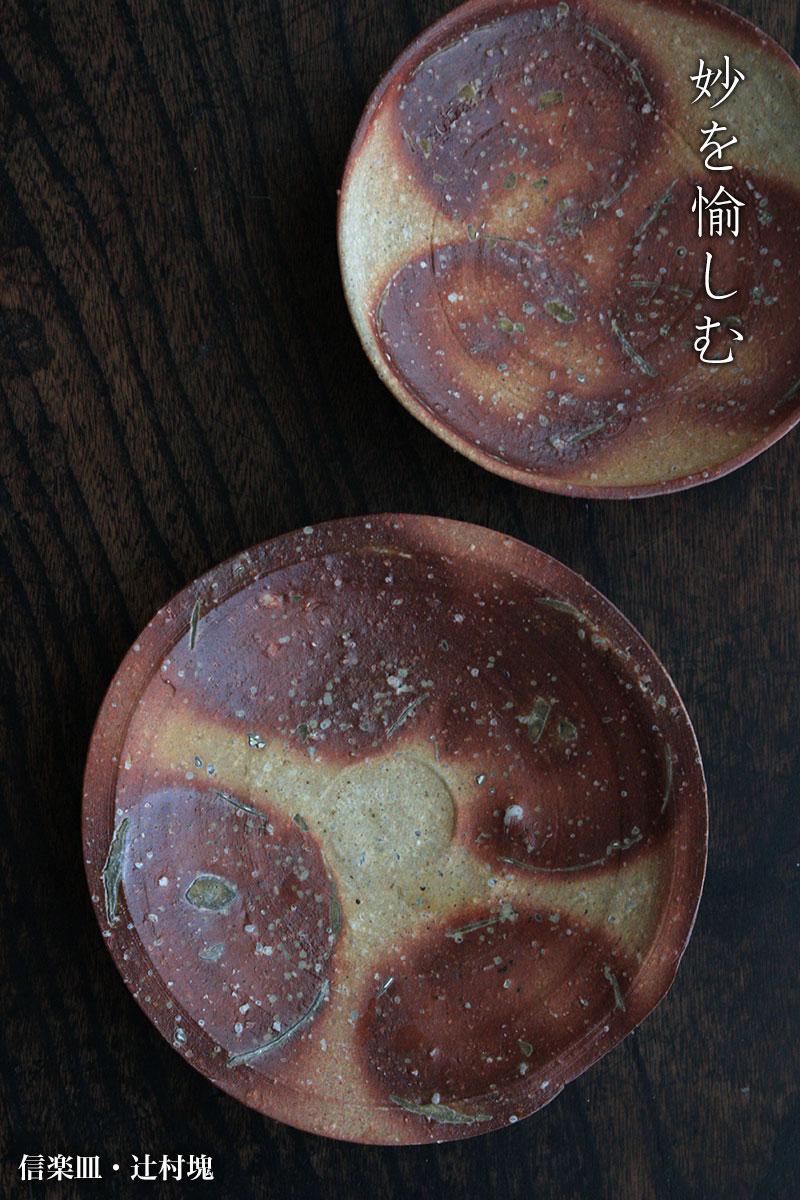 信楽・伊賀焼・辻村塊