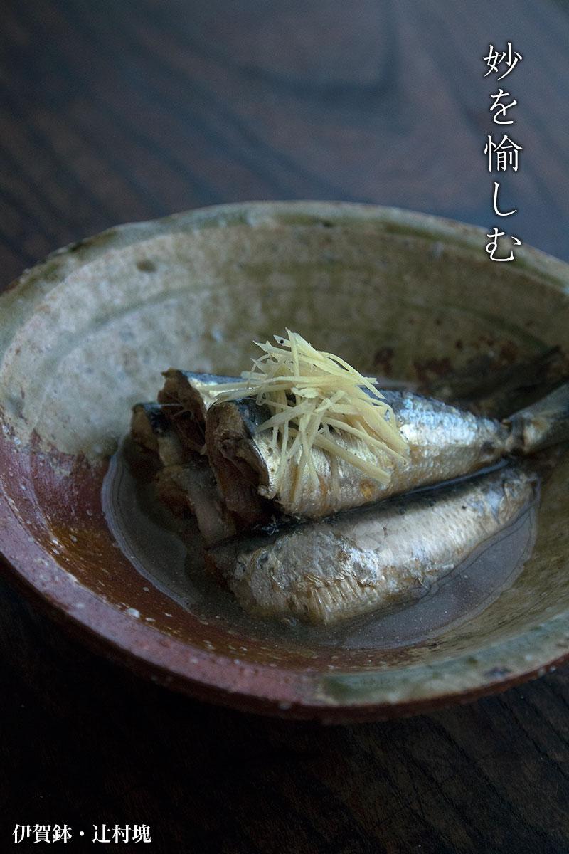 伊賀焼:伊賀鉢・辻村塊