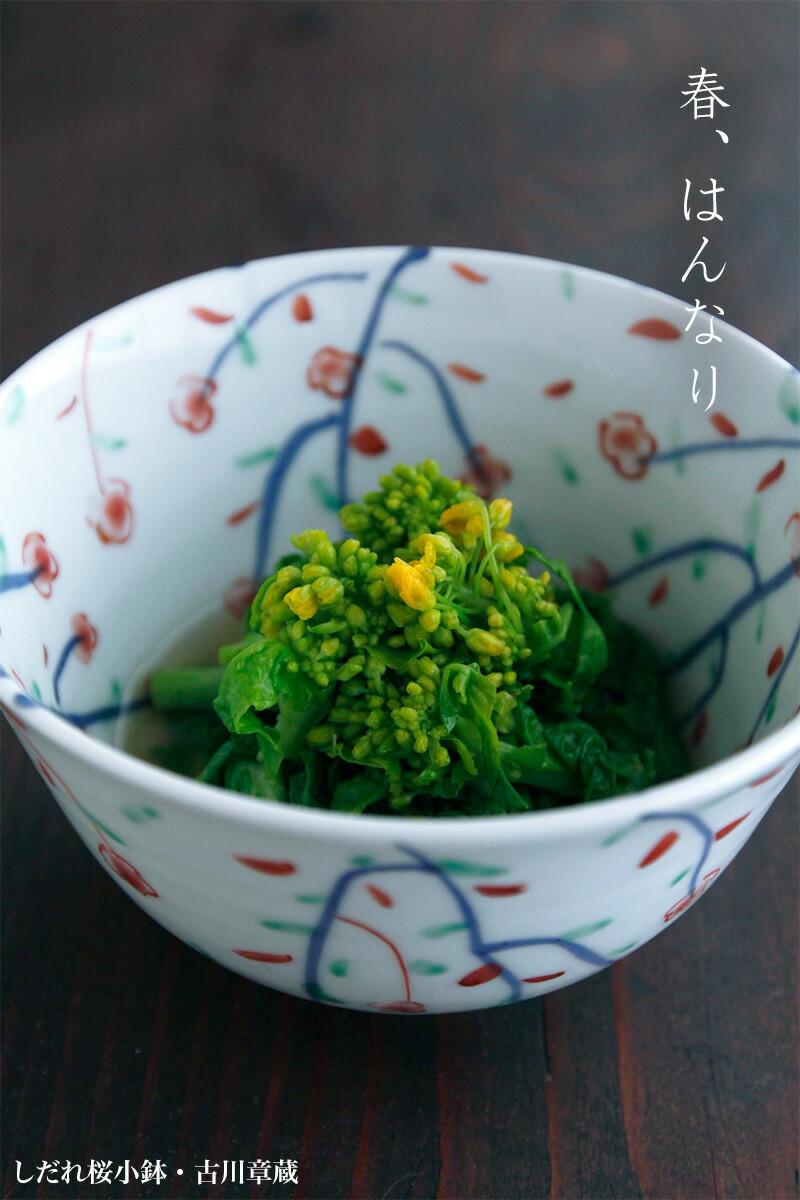しだれ桜小鉢・古川章蔵|和食器の愉しみ・工芸店ようび