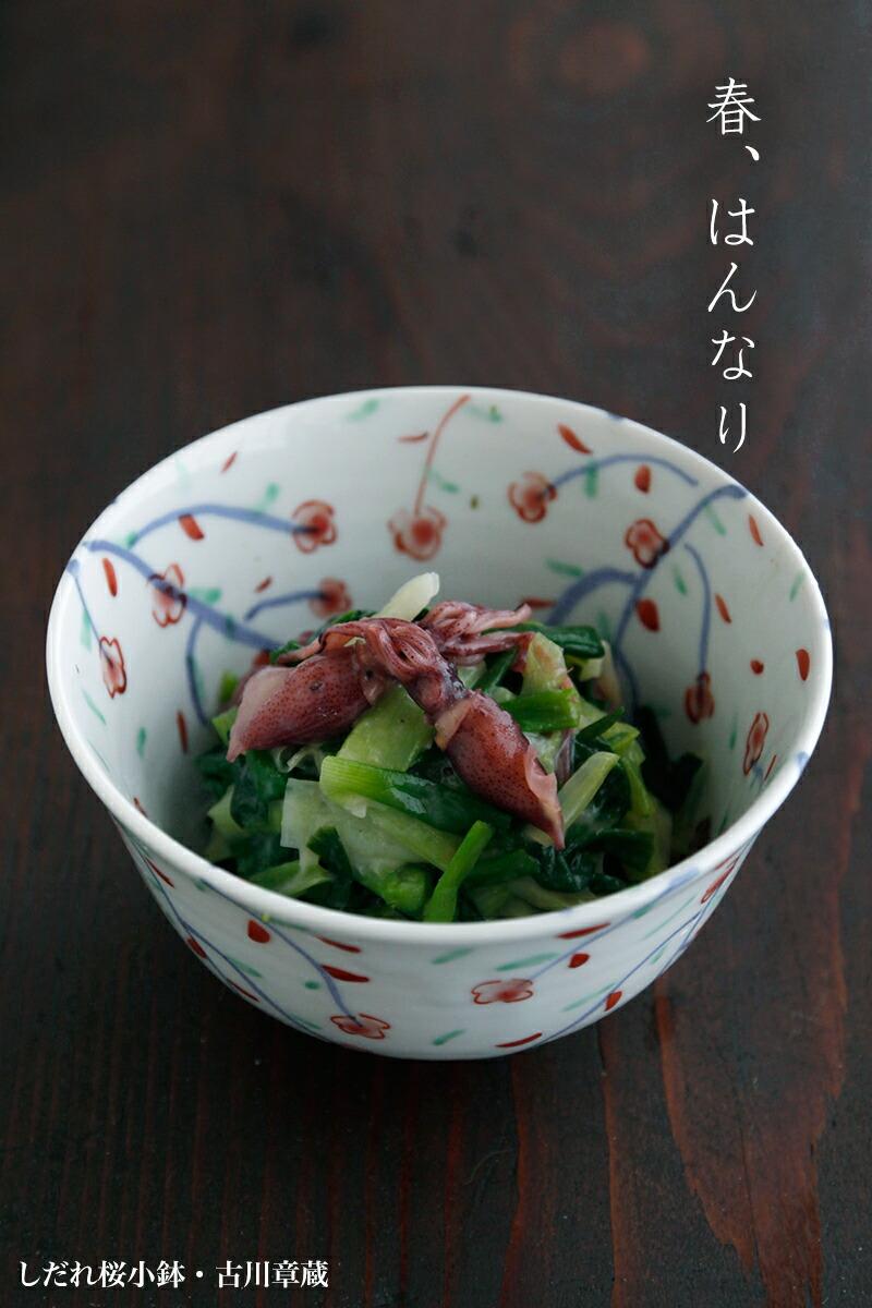 しだれ桜小鉢・古川章蔵