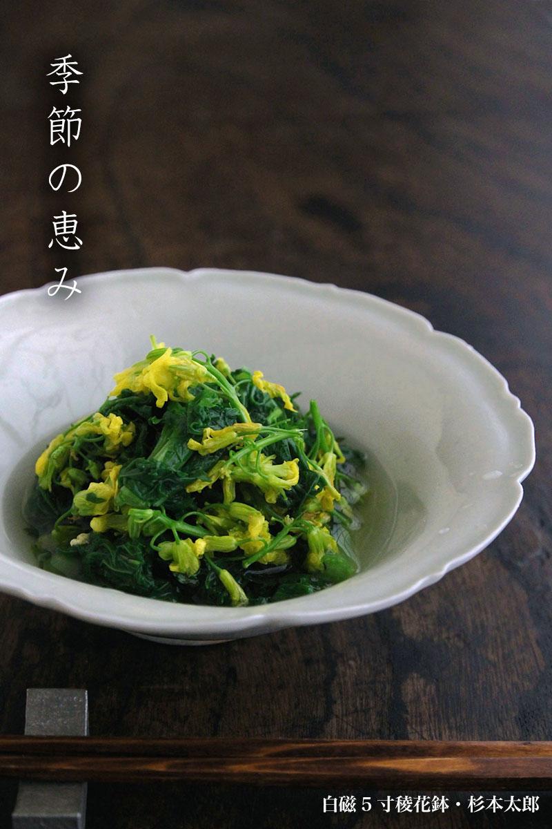 白磁5寸稜花鉢・杉本太郎