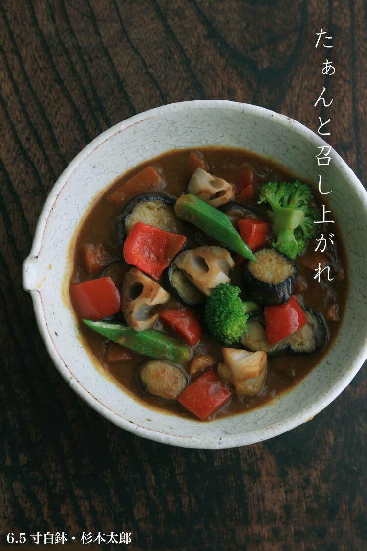 6.5寸白鉢・杉本太郎