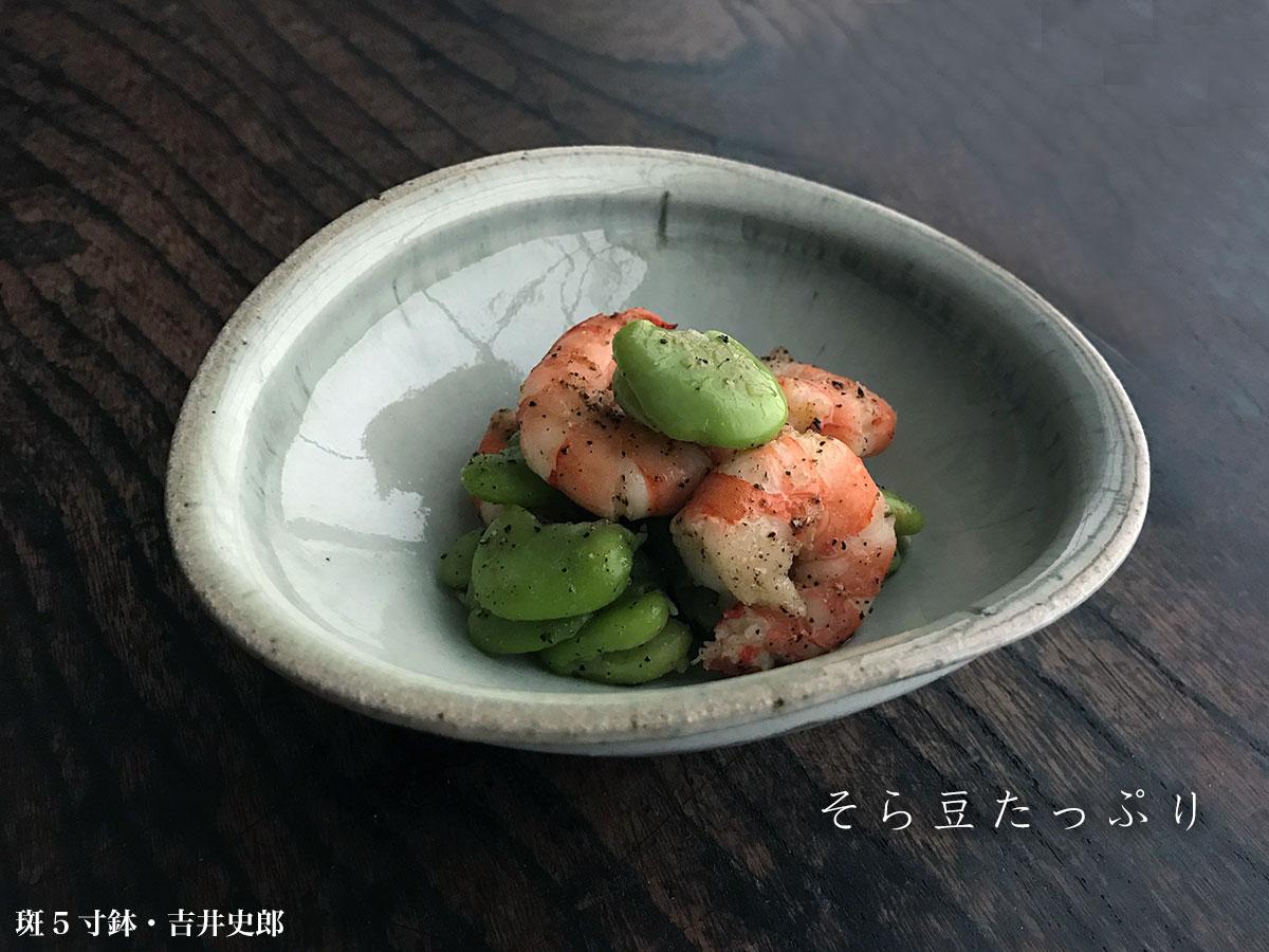斑5寸鉢・吉井史郎