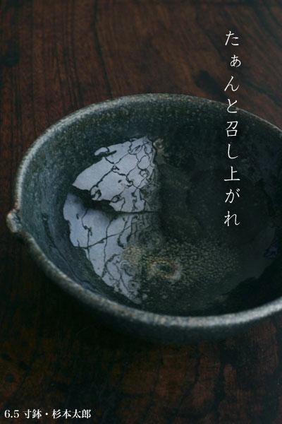 6寸鉢・杉本太郎