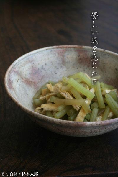 6寸白鉢・杉本太郎