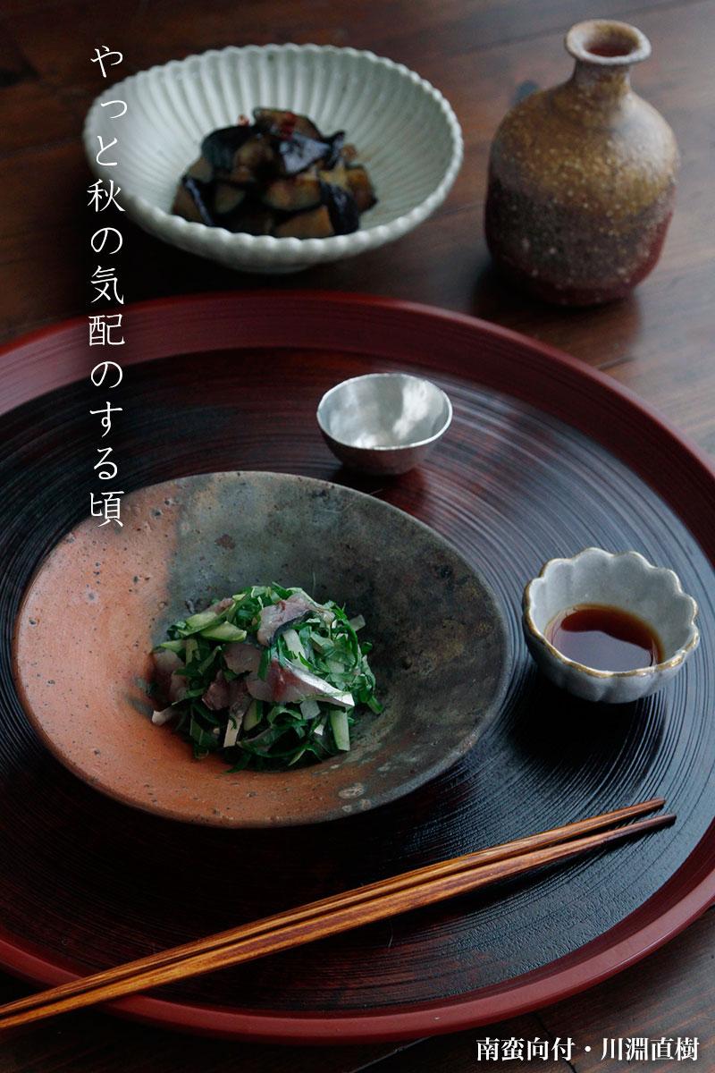 白磁6寸菊花鉢・杉本太郎