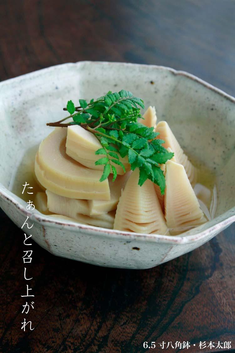 6.5寸八角鉢・杉本太郎