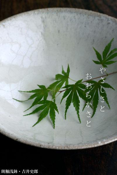 斑釉浅鉢・吉井史郎