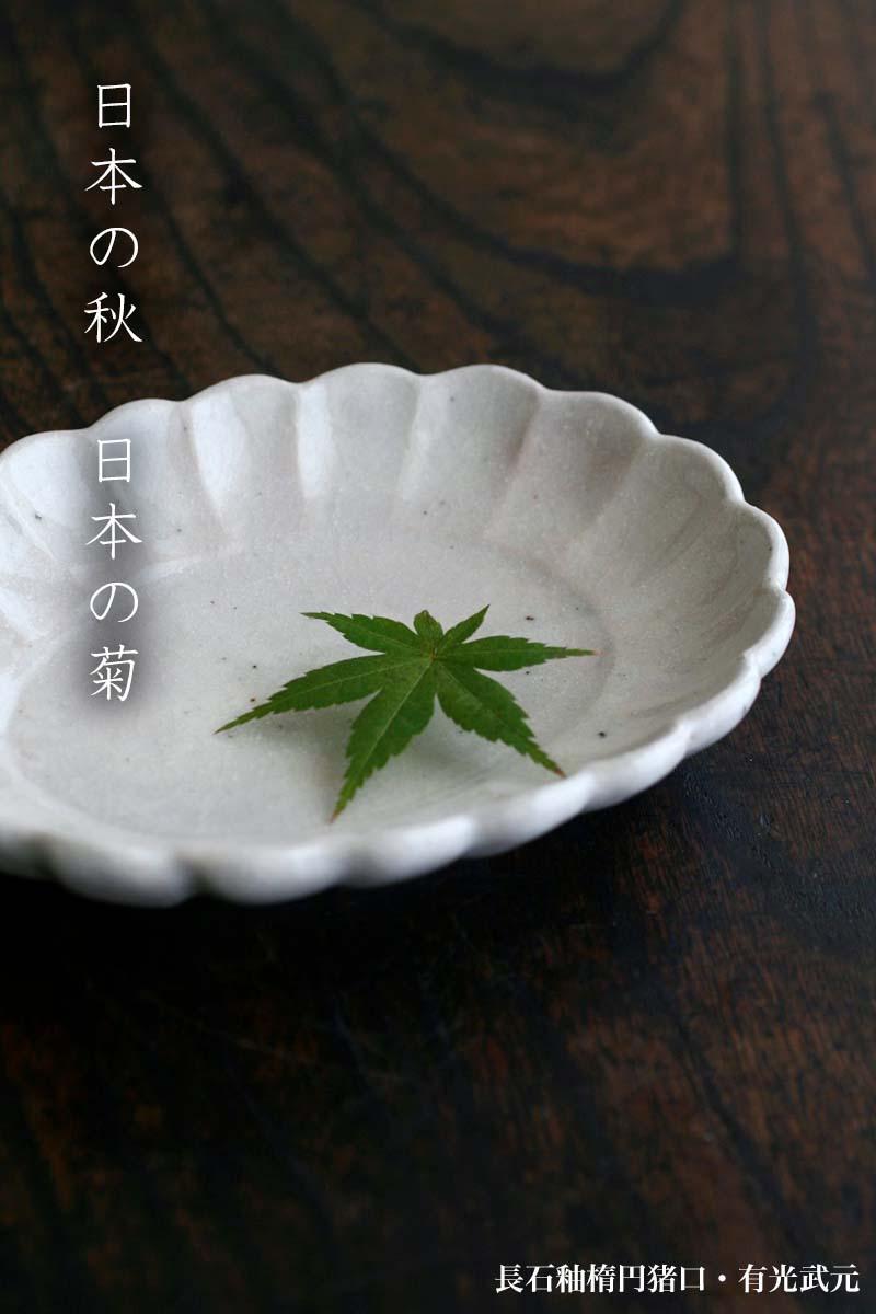 長石釉楕円菊皿・有光武元