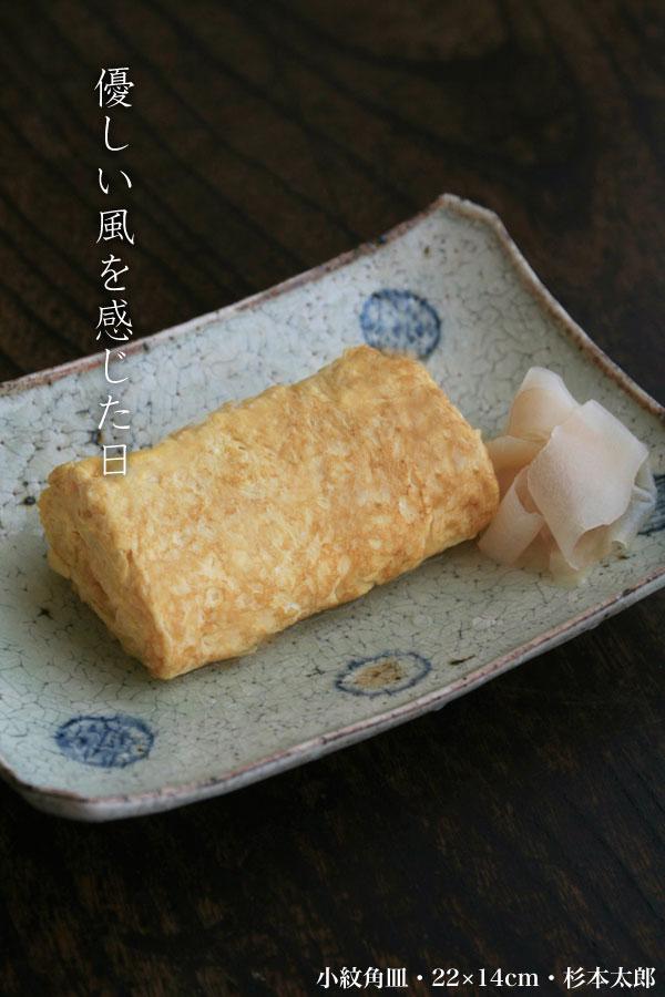 小紋角皿・22×14cm・杉本太郎